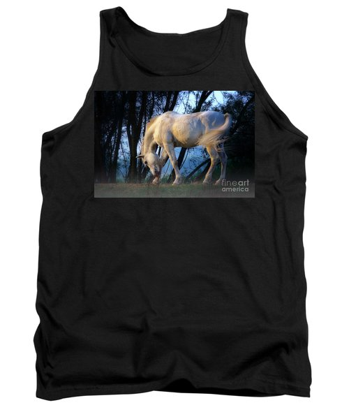 White Horse In The Early Evening Mist Tank Top by Nick  Biemans