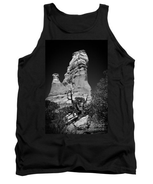 Arches National Park Bw Tank Top by Larry Carr