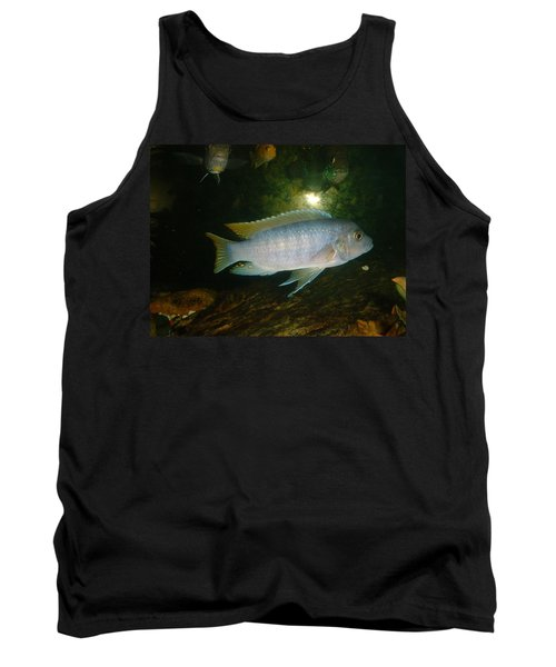Tank Top featuring the photograph Aquarium Life by Bonfire Photography