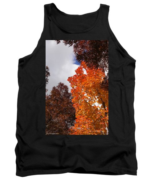 Tank Top featuring the photograph Autumn Looking Up by Mick Anderson