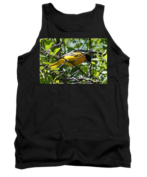 Baltimore Oriole Tank Top