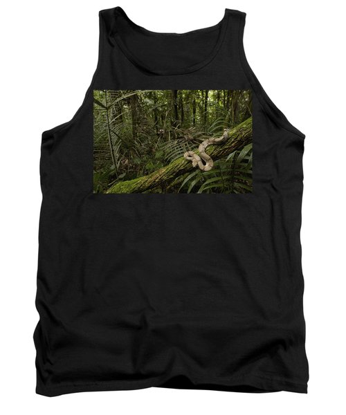 Boa Constrictor Boa Constrictor Coiled Tank Top by Pete Oxford