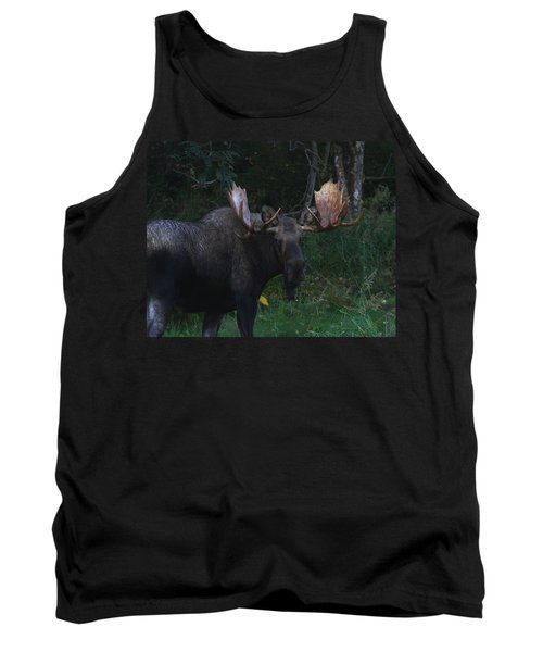 Tank Top featuring the photograph Checking You Out by Doug Lloyd