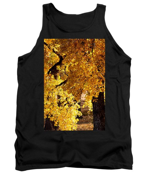Colorado Gold Tank Top by Colleen Coccia