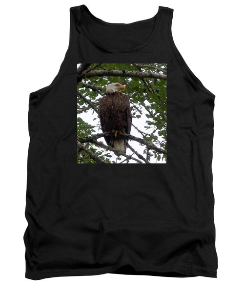 Tank Top featuring the photograph Eagle At Hog Bay Maine by Francine Frank