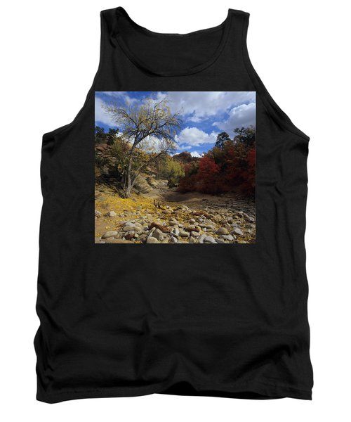 Fall In Zion High Country Tank Top