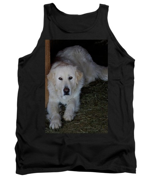 Guarding The Barn Tank Top