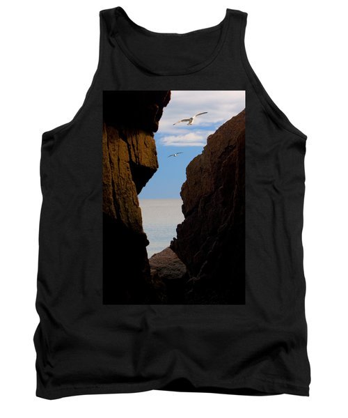 Gulls Of Acadia Tank Top by Brent L Ander