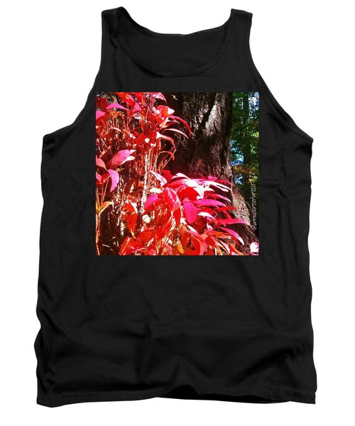 In The Shelter Of Your Arms Tank Top