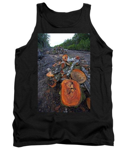 Logged Red Mangrove Rhizophora Mangle  Tank Top