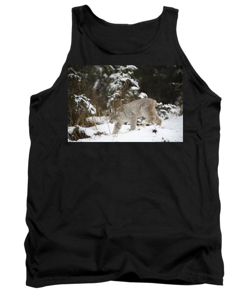 Lynx In The Snow Tank Top