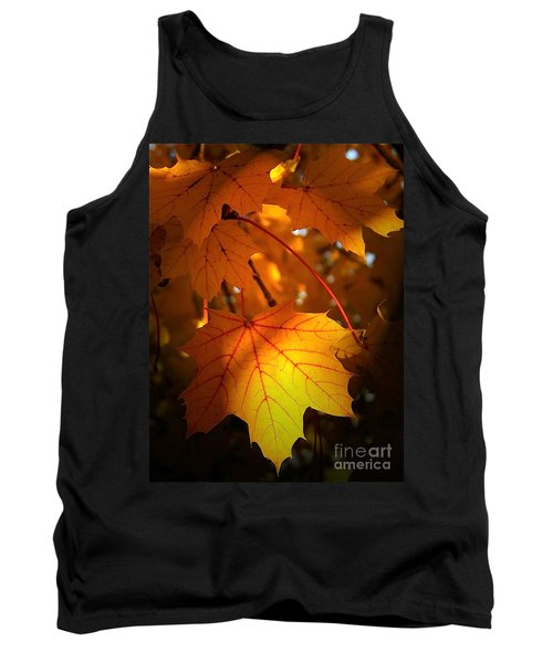 Maple At First Light Tank Top by Sue Stefanowicz