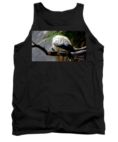 Tank Top featuring the photograph Pied Imperial Pigeon by Davandra Cribbie