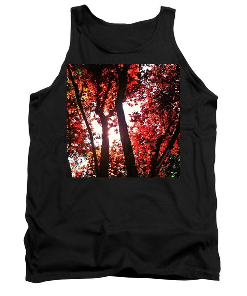 Reaching For Glory - Afternoon Light Tank Top