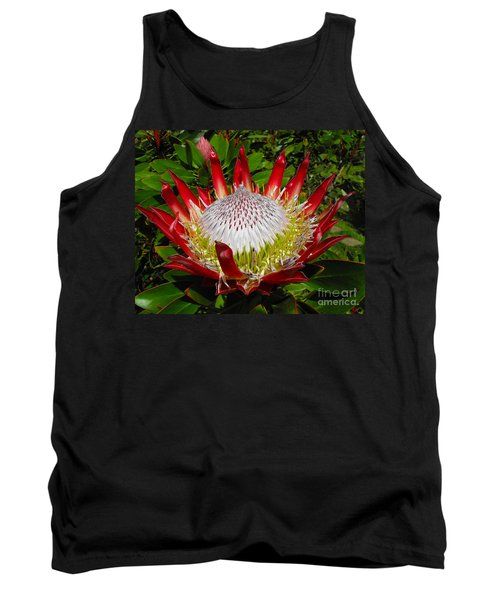 Red King Protea Tank Top by Rebecca Margraf