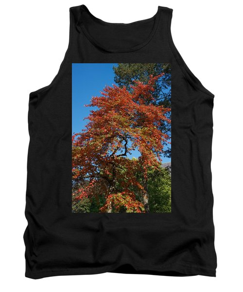 Tank Top featuring the photograph Soaring Fall by Joseph Yarbrough