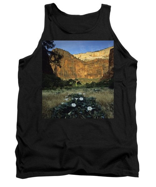 Spring At Big Bend Tank Top