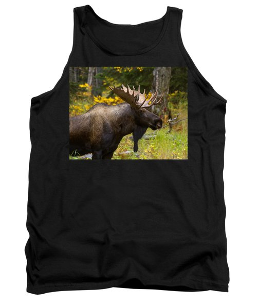 Tank Top featuring the photograph Standing Proud by Doug Lloyd