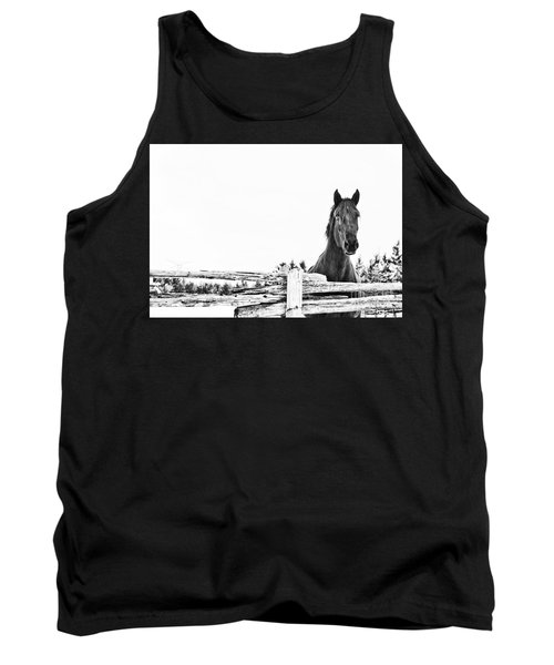 Take Me For A Ride Tank Top by Traci Cottingham