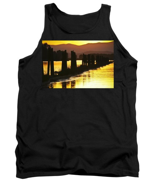 The Lost River Of Gold Tank Top by Albert Seger