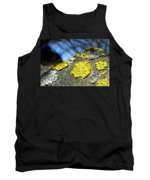 Tank Top featuring the photograph Tree Lichen by Ausra Huntington nee Paulauskaite
