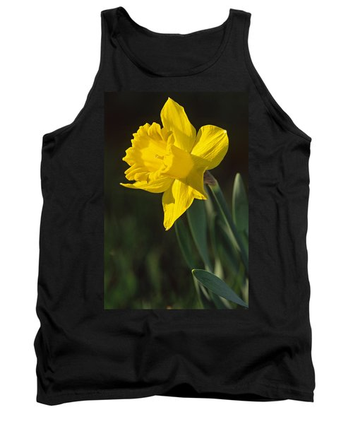 Trumpeting Daffodil Tank Top
