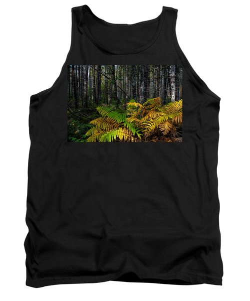 Where The Ferns Grow Tank Top