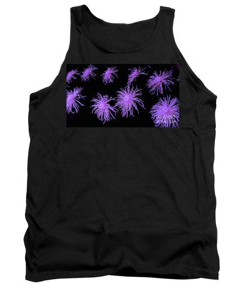 Chrysanthemums In Purple Tank Top