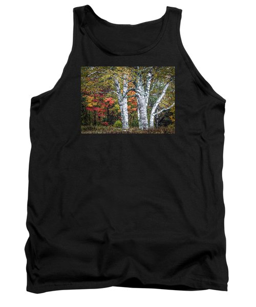 #0050 - Birch Trees Tank Top