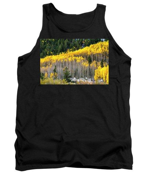 Aspen Trees In Fall Color Tank Top