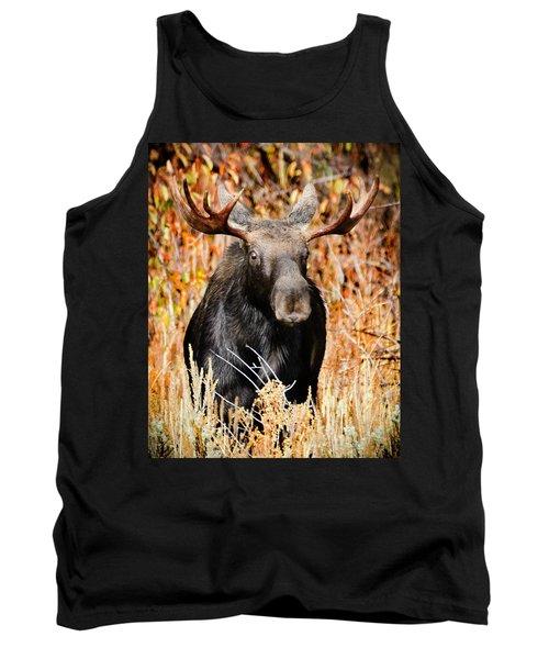 Bull Moose Tank Top