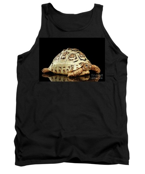 Closeup Leopard Tortoise Albino,stigmochelys Pardalis Turtle With White Shell On Isolated Black Back Tank Top by Sergey Taran