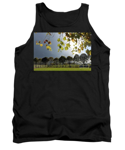 Denbies Vineyard Surrey Uk Tank Top