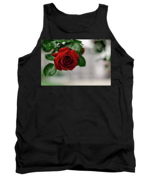 Roses In The City Park Tank Top