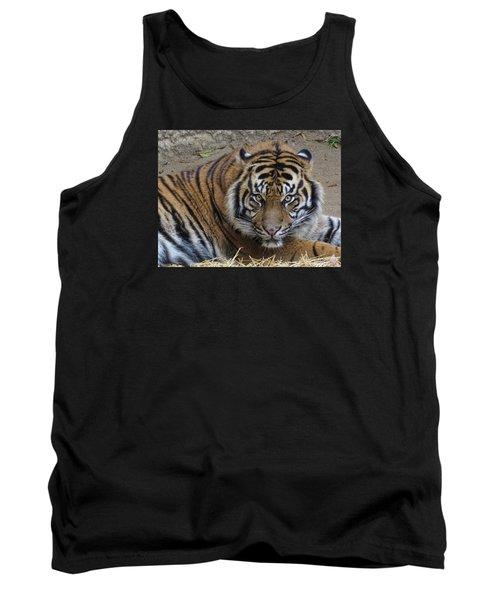 Staring Tiger Tank Top