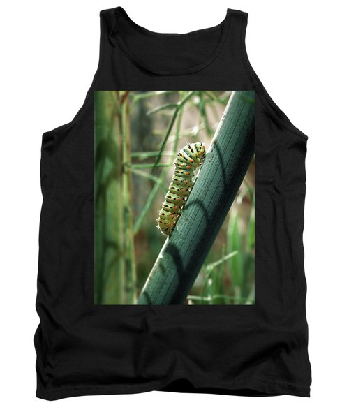 Swallowtail Caterpillar Tank Top by Meir Ezrachi