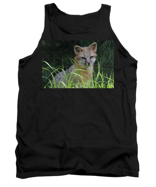 Gray Fox In The Grass Tank Top