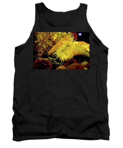 Sea Urchins Tank Top