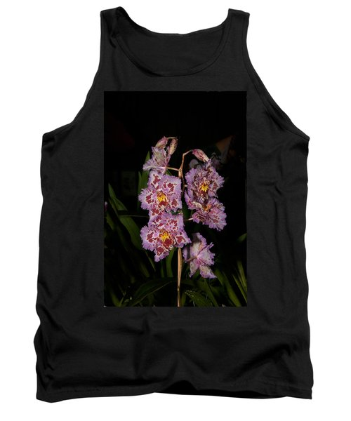 Cattleya Style Orchids Tank Top by Carol Ailles