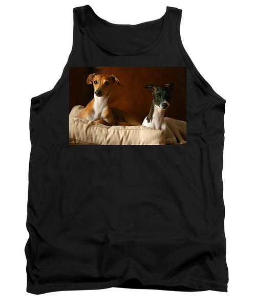 Italian Greyhounds Tank Top by Angela Rath