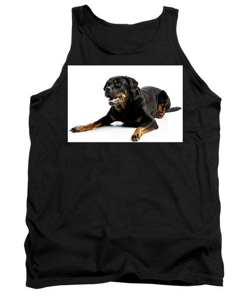Rottweiler Dog Tank Top