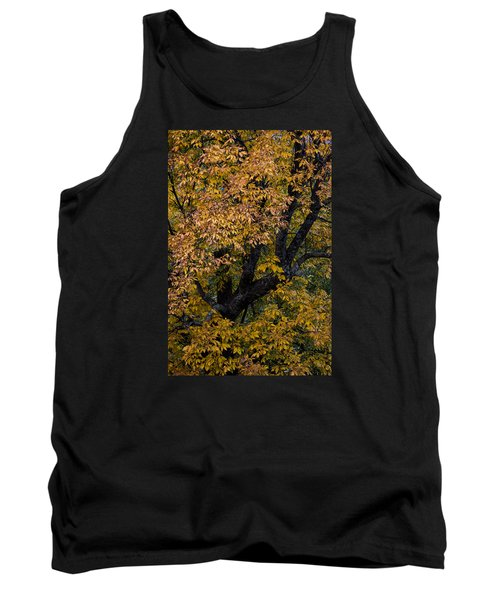 Fall Color Virginia West Virginia Tank Top