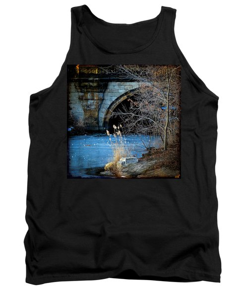A Frozen Corner In Central Park Tank Top