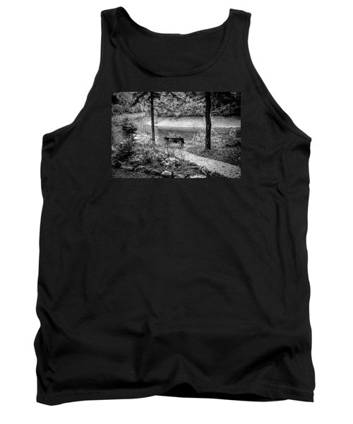 Tank Top featuring the photograph A Lone Bench By The Nantahala River by Kelly Hazel