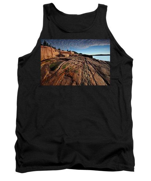 Acadia Rocks Tank Top by Neil Shapiro
