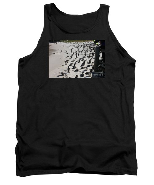 African Penguins On Beach Tank Top by Bev Conover