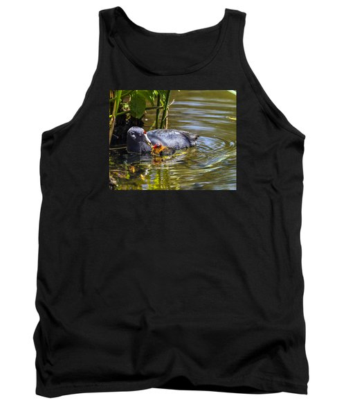 Andean Coot Feeding Her Chick Tank Top