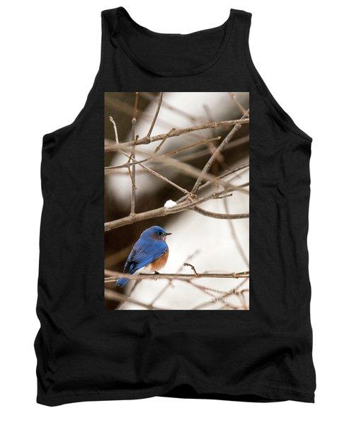 Backyard Bluebird Tank Top
