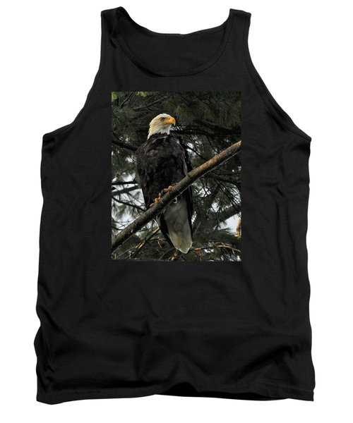 Tank Top featuring the photograph Bald Eagle by Glenn Gordon