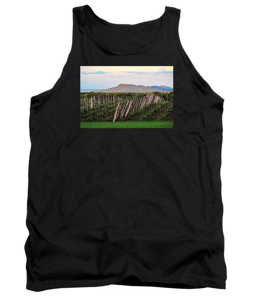 Black Birch Vineyard And Summit House View Tank Top
